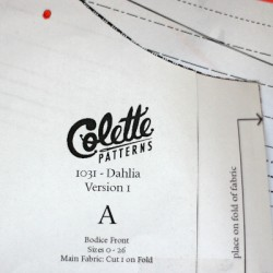Schnittmuster Colette Dahlia Dress