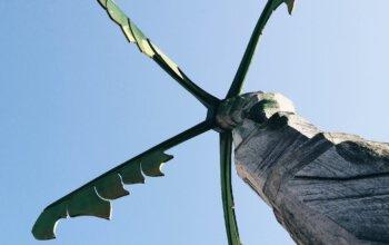 Palme aus Holz vor blauem Himmel